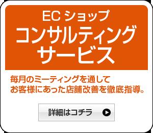 ECショップコンサルティングサービス