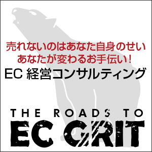 売れないのはあなた自身のせい あなたが変わるお手伝い! EC経営コンサルティング THE ROADS TO EC GRIT